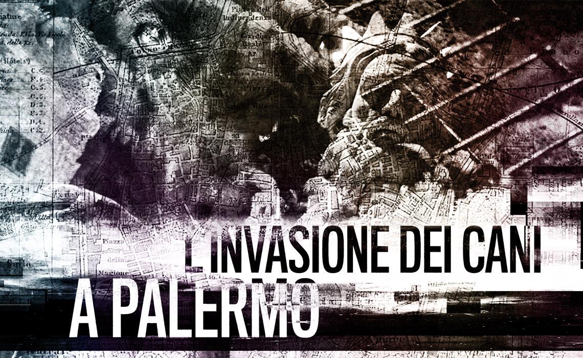 L'invasione dei cani a Palermo
