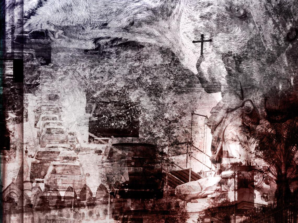 L'invasione dei cani a Palermo — Cap. XIII