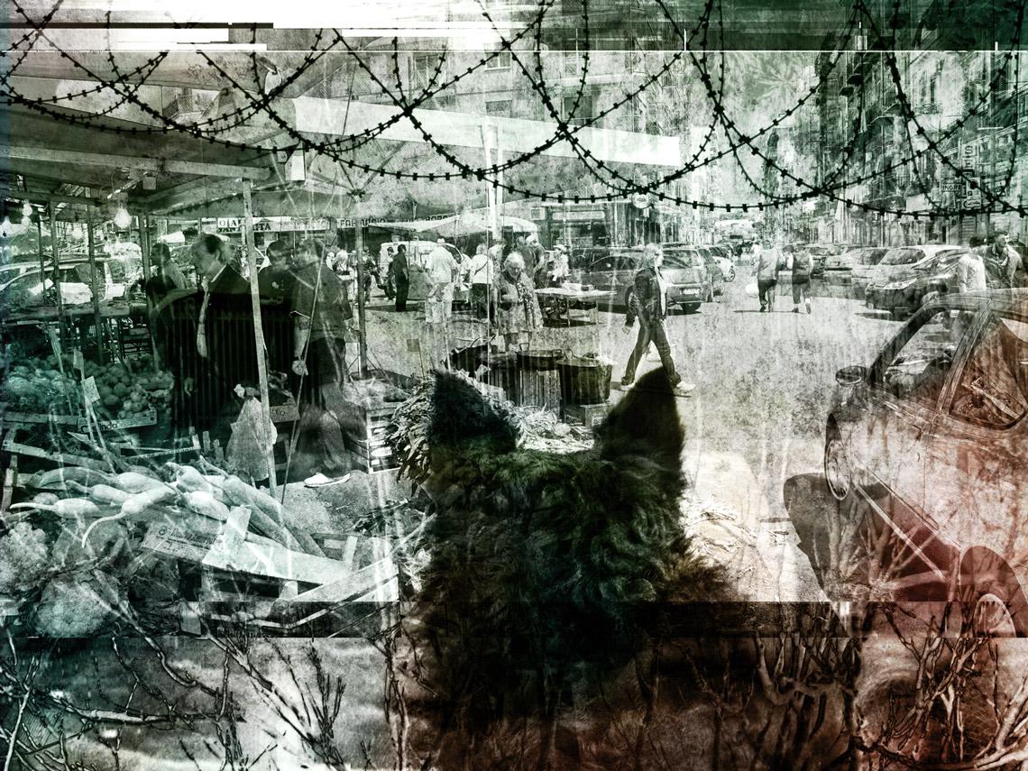 L'invasione dei cani a Palermo — Cap. XIV